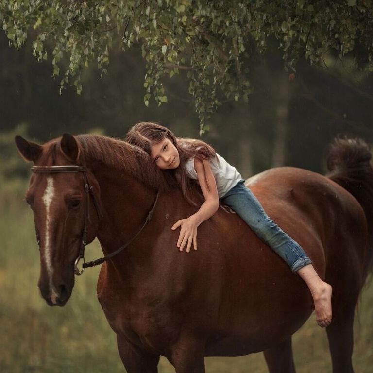 Прокат лошадей в Москве